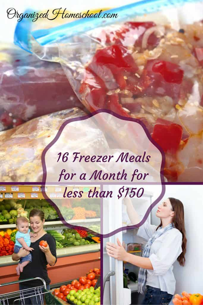 16 Freezer Meals for a Month for less than $150