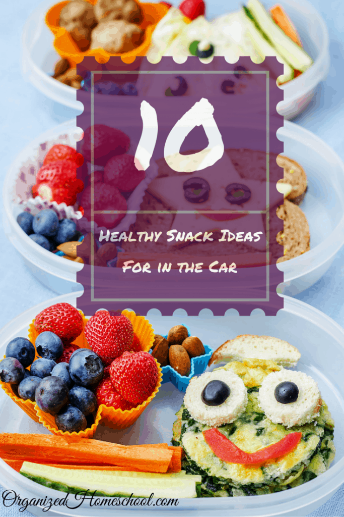 10 Healthy Kid Snacks for Road Trips