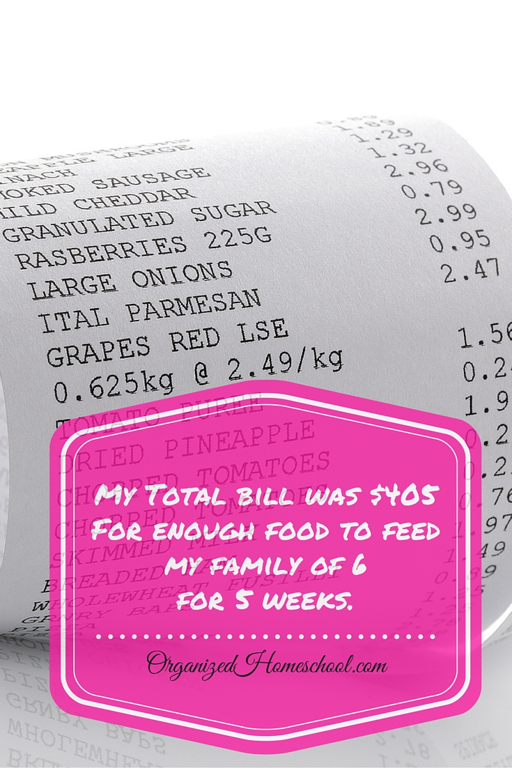 Grocery Shopping Bill frugal grocery budget