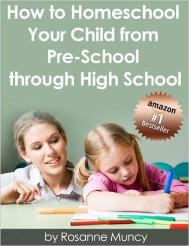 how to homeschool books how to homeschool your child from preschool through high school