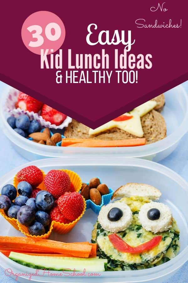Easy Low Prep Healthy Lunch Ideas for Kids