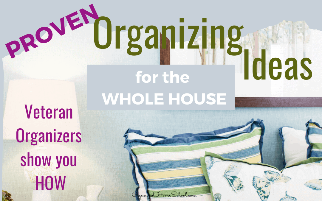 Organizing Ideas Whole House