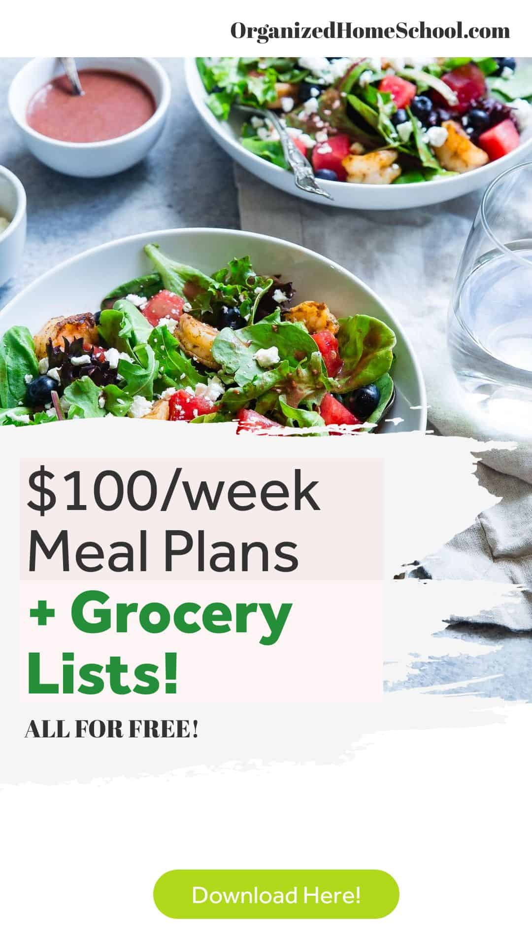 feed family for 100 week meal plans