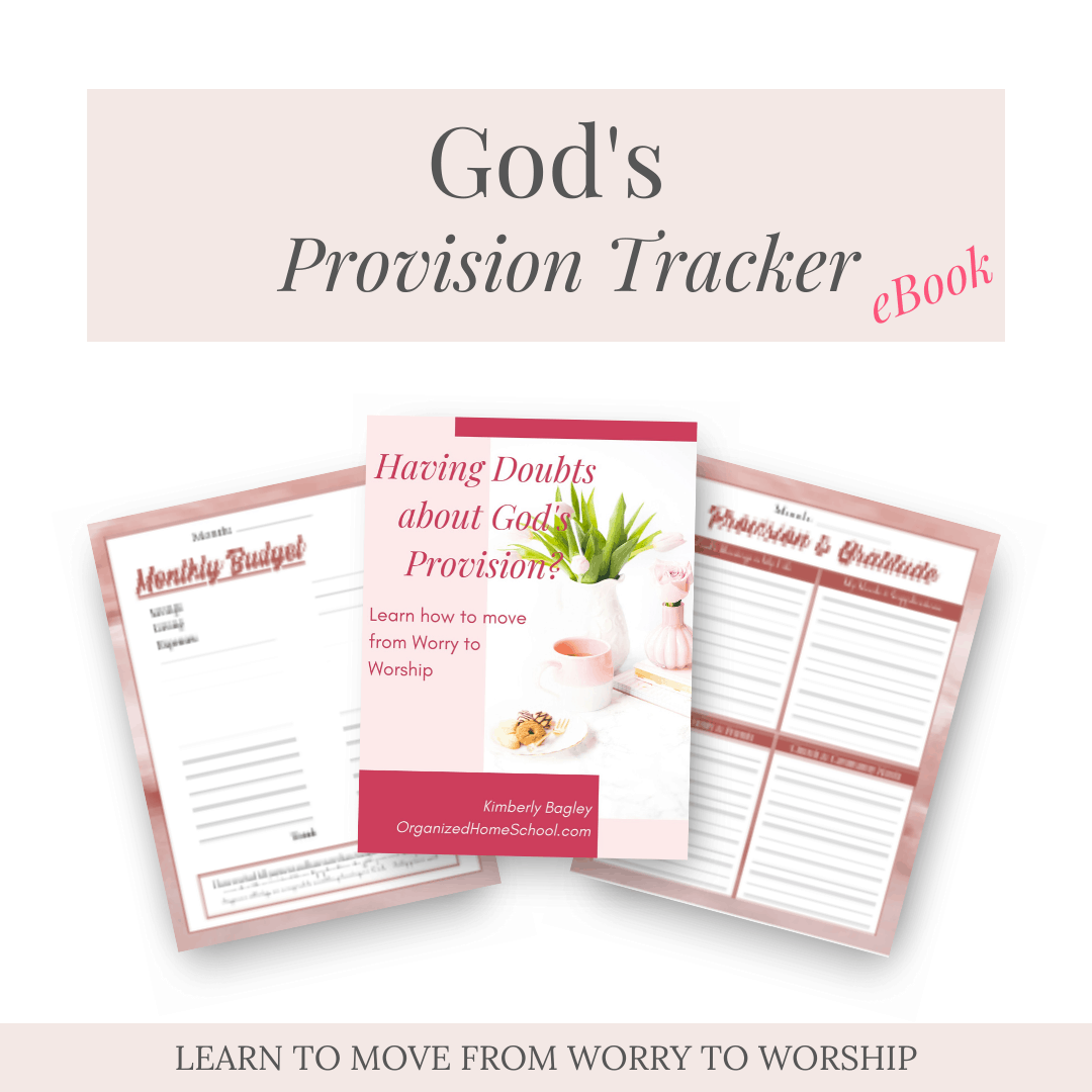 Gods Provision Tracker eBook