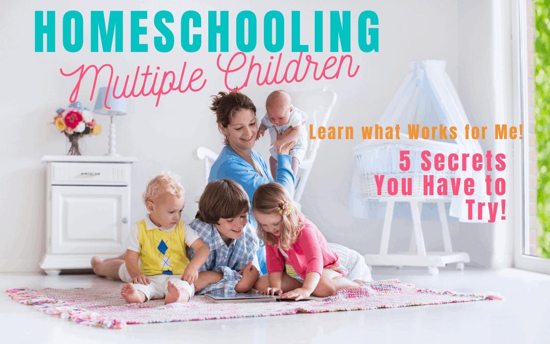 Homeschooling Multiple Children fb