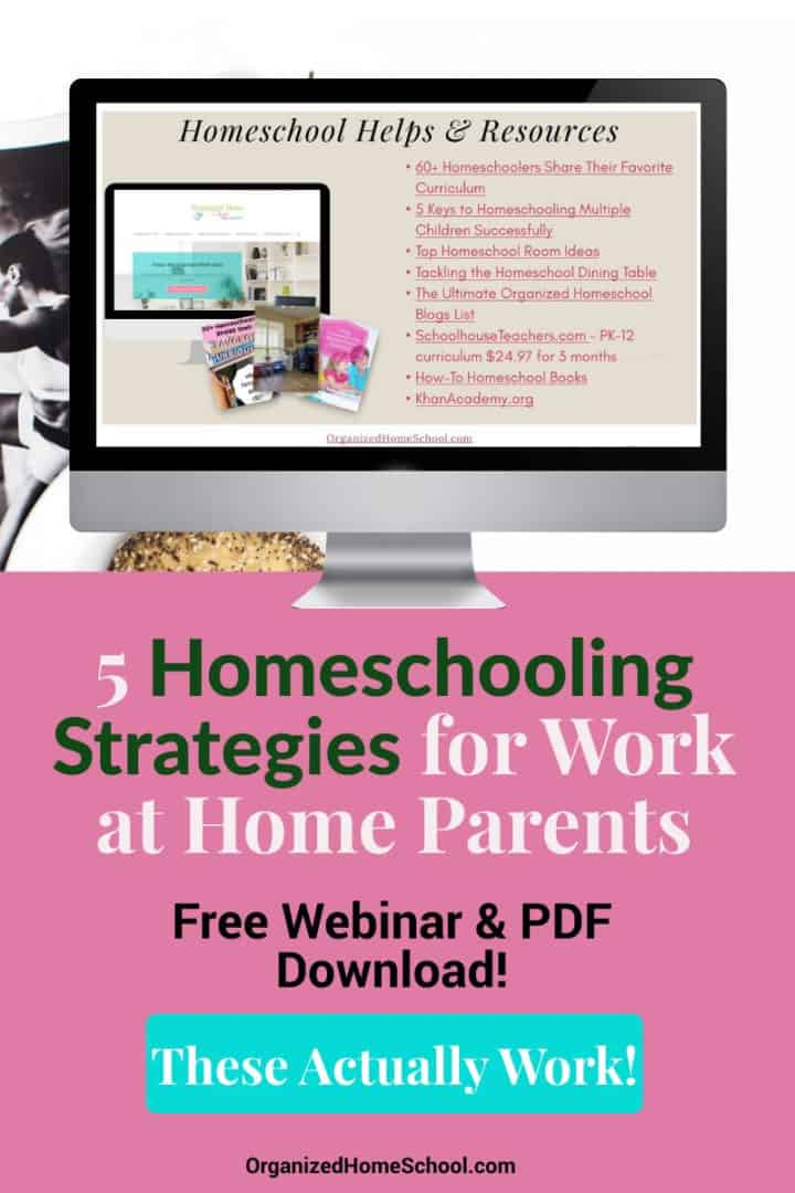 homeschool schedule ideas for work from home parents
