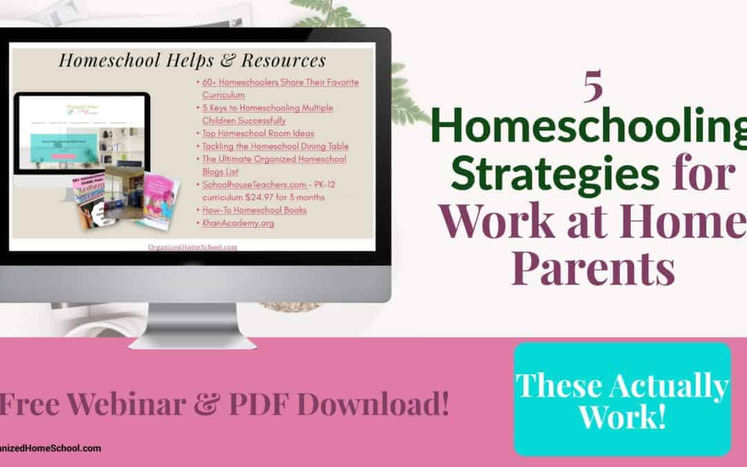 5 Homeschooling Strategies for Work at Home Parents