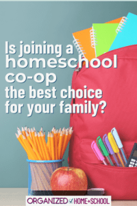 Every year I consider joining a homeschool co-op, but then I remember all the reasons I didn't the year before. This post simply lays out advantages and disadvantages of joining a co-op. Maybe it can help you decide what's best for your family.